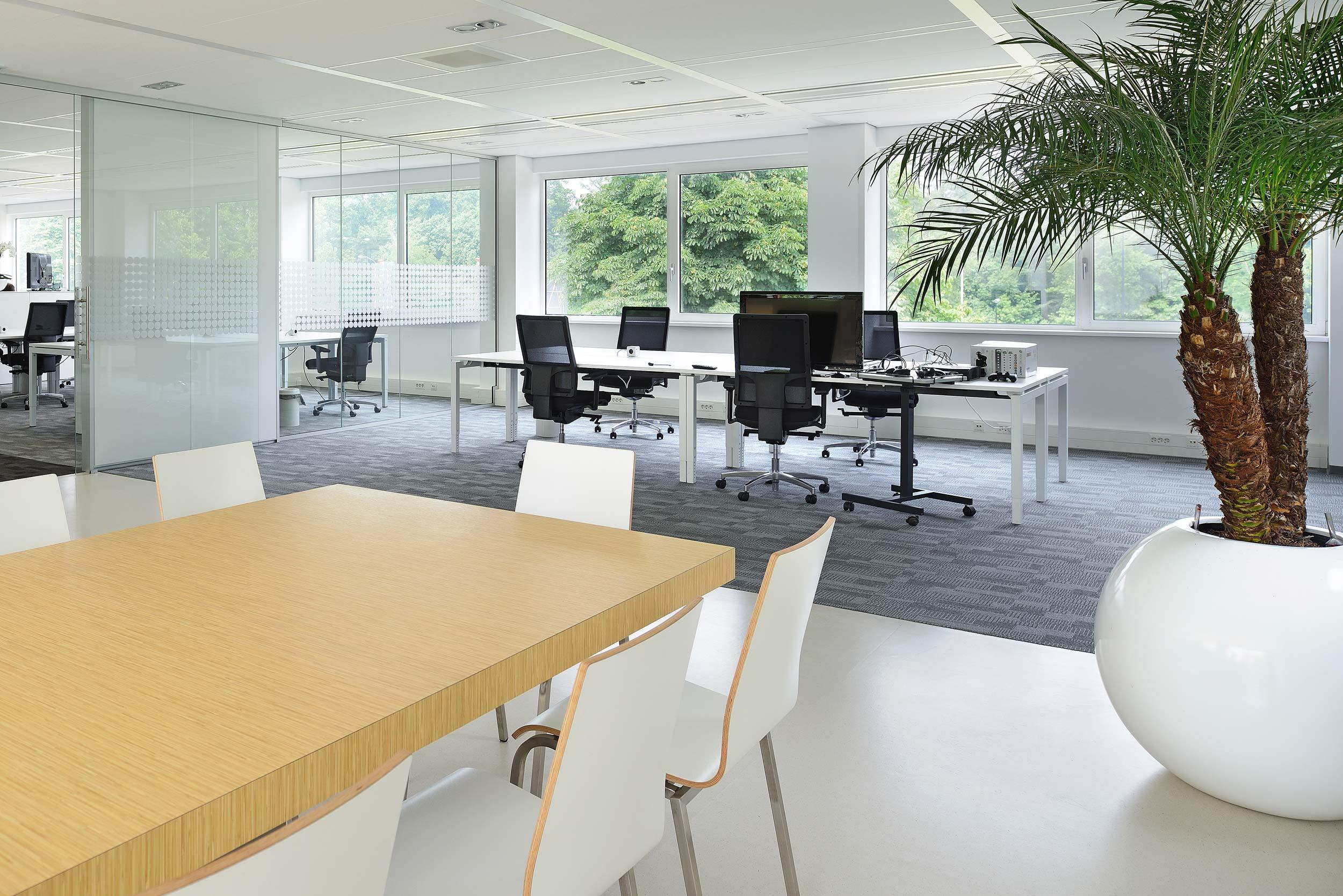 Fizzionparc kantoor interieur - fotograaf Chiel de Nooyer, interieurfotograaf